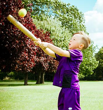 Baseball Softball boy bat ball purple 353x378 1
