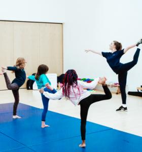 Gymnastics Gallery 2